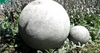 Идея для дачи из детского мяча