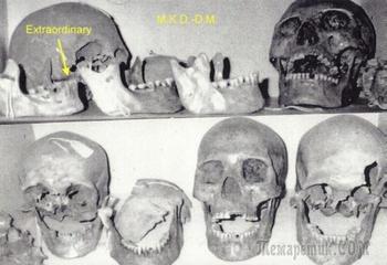 Легенды о Саидуках — рыжеволосых людоедов-гигантов