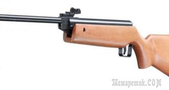 Пневматическая винтовка Umarex Perfecta 45 — простая модель для новичков
