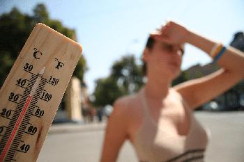 Почему мы толстеем в жару