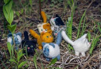 Валяем симпатичного маленького котика и его друзей