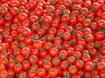 Загадка про помидор для развивающих игр с ребенком