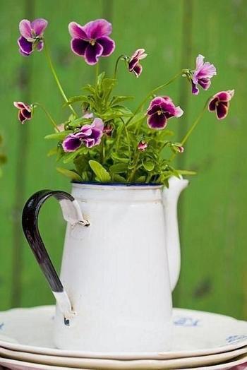 Замечательные идеи для посадки цветов в вашем дворе