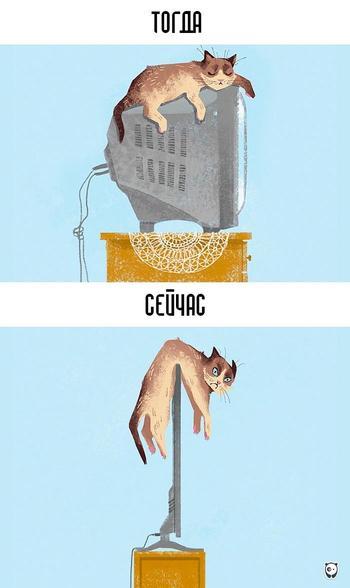 Тогда и сейчас: как современные технологии изменили жизнь кошек