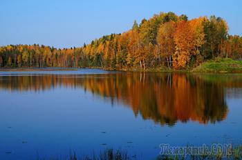 багрец и золото одетые леса