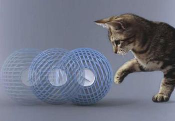 5 самых нужных аксессуаров для ухода за домашними животными
