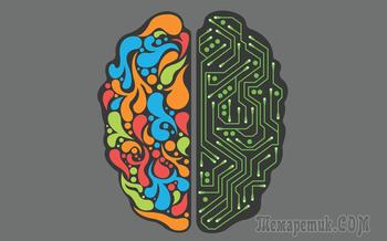 Оригинальные задачи с подвохом – чтобы потренировать логику и мышление