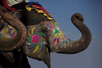 Индийский гороскоп по дате рождения раскрывает главные особенности характера