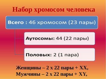 """Сколько хромосом у """"нормального"""" человека"""