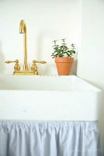 8 лучших растений для ванной