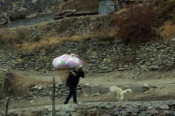 Непал. Гималаи. Трек вокруг Аннапурны 24. Лучшее. Навал (3660) - радиальный выход под перевал Канг-Ла (4350) - Кхарка (4050)