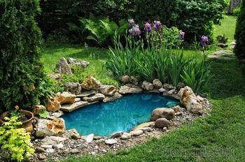 Так просто: 25 крутых фишек, которые превратят ваш участок в сад с обложки