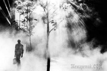 Австралийский фотограф Трент Парк: «Свет превращает обыкновенное в волшебное»
