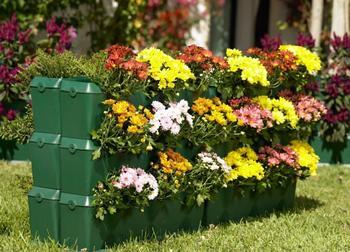 Цветники и цветочные клумбы своими руками — советы как украсить свой сад или двор