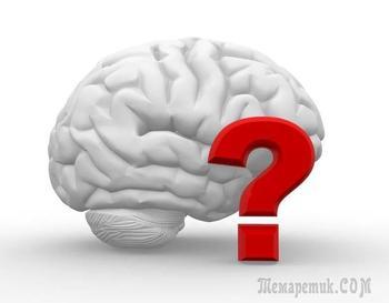 5 интересных логических задачек для тренировки логики