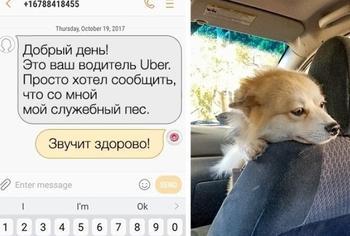 11+ случаев, когда таксисты ответственно подошли к своей работе