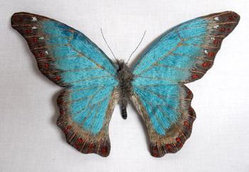 Крутые мотыльки и бабочки от художницы Юми Окита