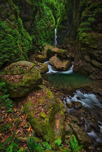 Победители конкурса Nature Conservancy Global Photo Contest 2019