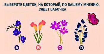 Выбери цветок и узнай свою роль в отношениях