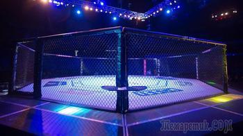 «Бойцовский остров»: UFC спрячется от коронавируса