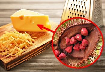 11 ингредиентов в составе обычных продуктов, которые вас удивят