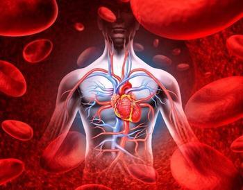 Нарушение кровообращения: 4 натуральных средства для лечения