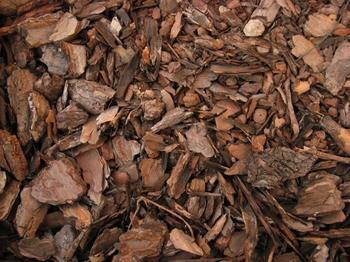 Чем можно мульчировать осенью – варианты на любой вкус