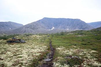 В России бесплатно раздадут земли за полярным кругом