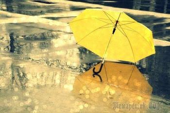 Дождевое (Стих)