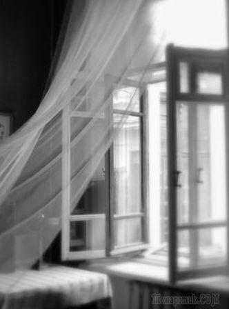 Открыв окно (Стих)