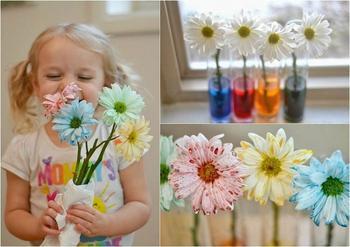 Увлекательный эксперимент для детей: красим живые цветы