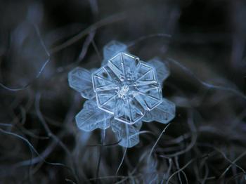 Снежинки, какими вы их ещё не видели