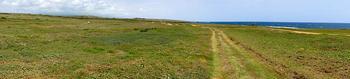 Пляж с зеленым песком Папаколеа: уникальное место, где можно полежать на драгоценных камнях