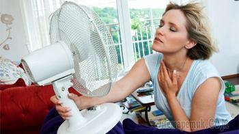 Как пережить жару если нет кондиционера: советы, лайфхаки и широко распространённые ошибки