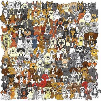 Одинокая панда потерялась и примкнула к армии собак, а вы видите ее?