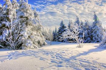 Зима в Сибири (Стих)