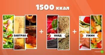 Как выглядят 1500 Ккал в день?