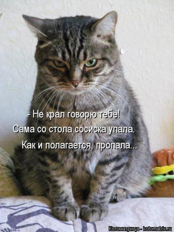 Новая котоматрица для настроения