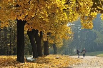 Я хочу в этот вечер с тобой прогуляться (Стих)