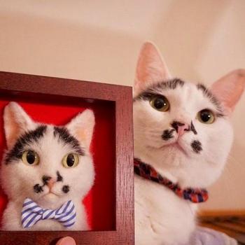 Трёхмерные войлочные портреты кошек