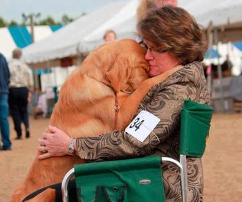 Собаки, которые очень любят человеческие объятия