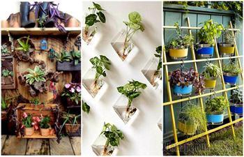 19 чудесных вертикальных садов, которые может сделать каждый
