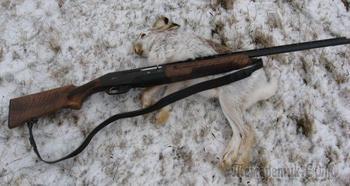 Основные характеристики карабина для охоты и развлечений Тукан / ВПО-210