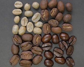 Как можно научиться разбираться в кофе?