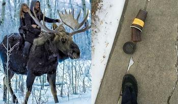 16 вещей, которые вы увидите только в Канаде