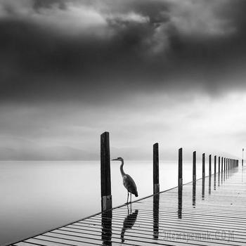 Чёрно-белые пейзажи Джордж Дигалаки