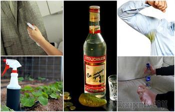 18 неожиданных способов полезного использования водки в повседневной жизни