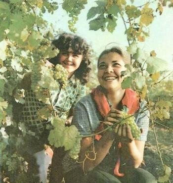 Настоящая красота советских женщин!