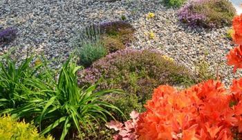 6 секретных приемов обустройства гравийного сада