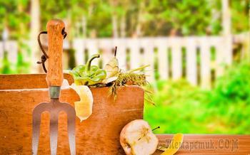 Можно ли класть в компостную яму гнилые яблоки и другие подгнившие продукты?